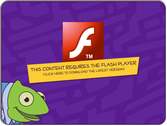 Download the Flash Player